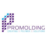 Promolding logo icon